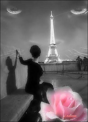 Quelle différence y a-t-il entre une vierge et Paris ?