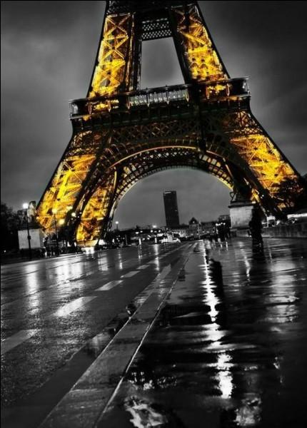 """Quels acteurs jouaient dans le film """"Paris brûle-t-il ?"""" avant d'être réunis également dans """"Borsalino"""" ?"""
