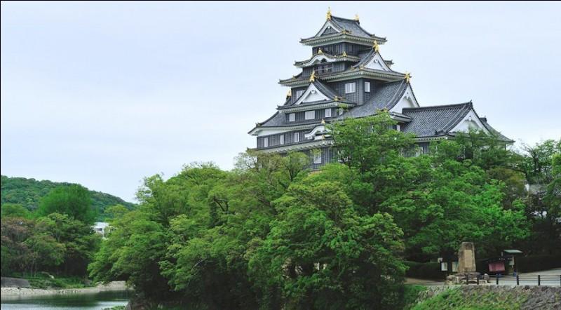 Construit en 1573, le château de la ville-préfecture d'Okoyama fut rebâti en 1966. Comme souvent au Japon, sa couleur (sombre) lui a donné un nom poétique. Lequel ?