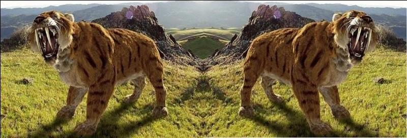Quel type d'animal est le tigre sabre ?