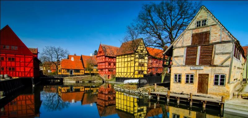 Aarhus est une ville située au/en :
