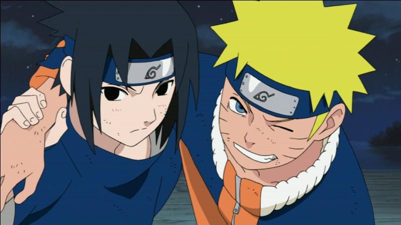 Qui est le plus âgé entre Sasuke et Naruto ?