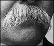 A qui appartient cette moustache ?