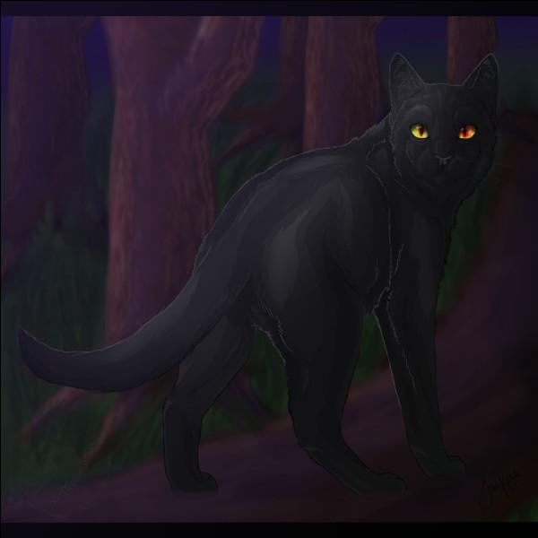 Étoile Noire, ancien chef du Clan de l'Ombre, n'a jamais reçu ses 9 vies ?