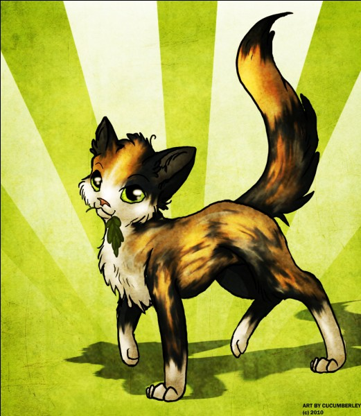 Petite Feuille a fait un entraînement de guerrière avant d'être guérisseuse.