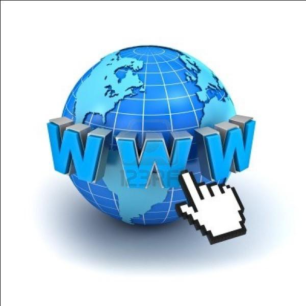 En quelle année a été lancé le World Wide Web, la vitrine multimédia d'Internet ?
