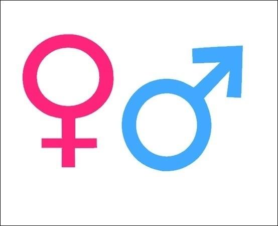Pour commencer, question basique : es-tu une fille ou un garçon ?