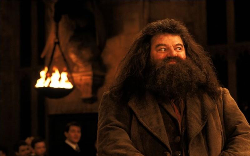 À la fin du chapitre, Harry, Ron et Hermione expliquent à Hagrid qu'ils sont sûrs que c'est Rogue qui a tenté de faire chuter Harry. Dans la conversation, Hagrid laisse échapper une information importante. Laquelle ?