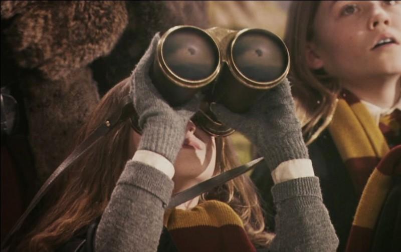 À cet instant, Harry perd le contrôle de son balai, qui se met à tournoyer et à être pris de soubresauts. Hermione repère le professeur Rogue, en train de proférer des incantations, et se dirige vers sa place pour le déconcentrer. Qui croise-t-elle en chemin ?