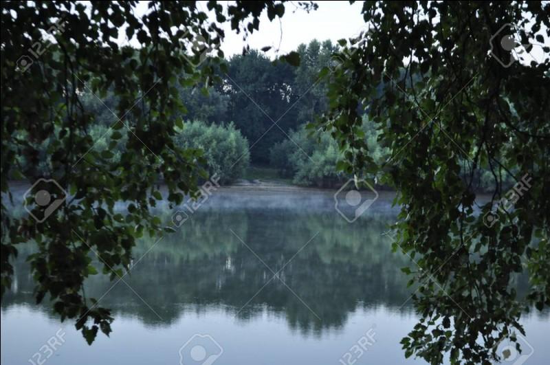 Quelle rivière arrose la ville de Limoges ?