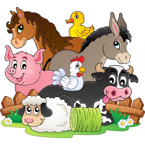 Les animaux en anglais, sauce nwt !