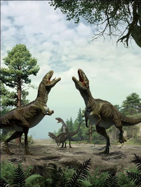 Les plus grands théropodes étaient :