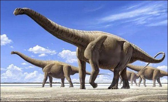 Les plus gros animaux qui ont existé sont :