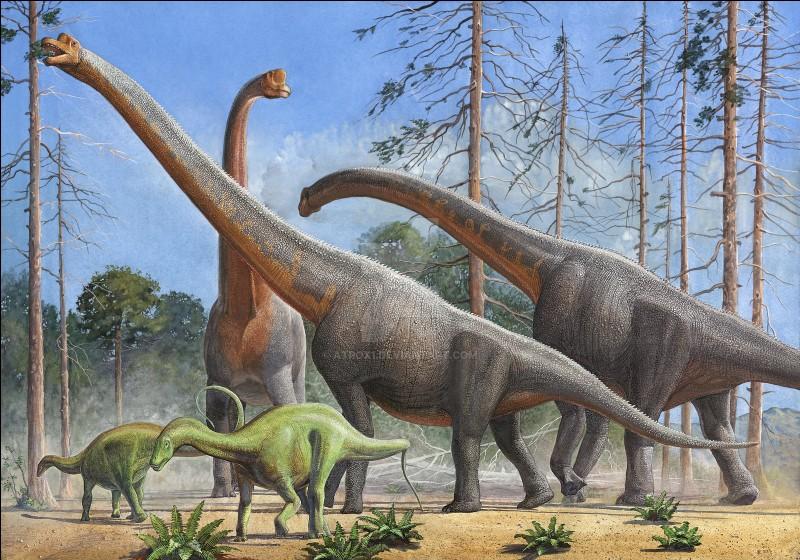 Le plus long de tous les dinosaures est