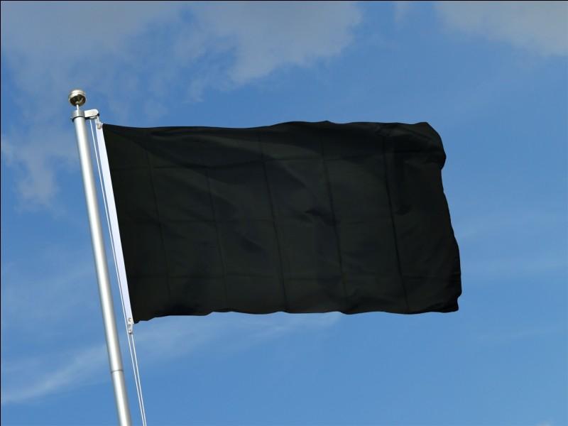 Le drapeau noir est celui du mouvement :