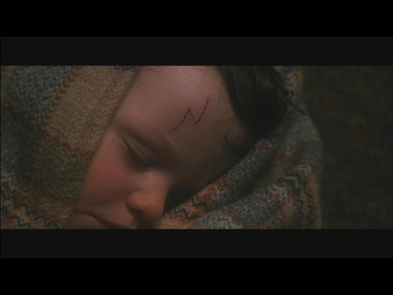 Quelle est l'adresse de la maison devant laquelle on dépose Harry, qui est encore bébé ?