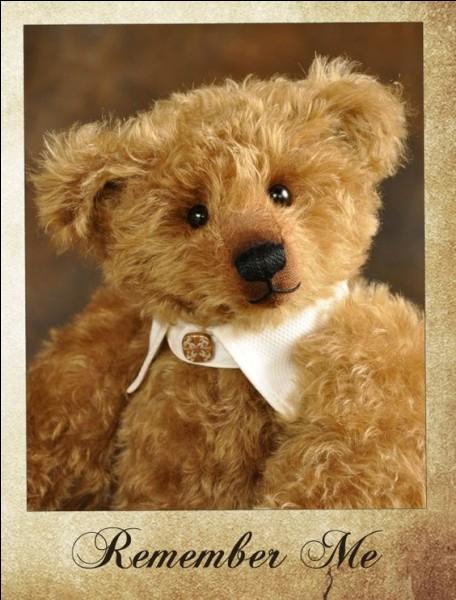 Le Teddy Bear doit son nom à Théodore Roosevelt, pourquoi ?