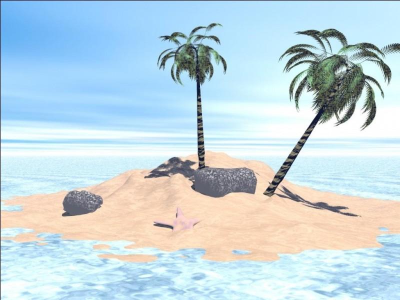 Maintenant, imagine-toi dans la peau du personnage !Avant d'aller sur l'île, que fais-tu ?
