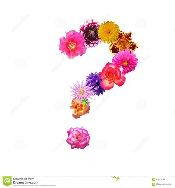 Chassez l'intrus parmi ces fleurs !
