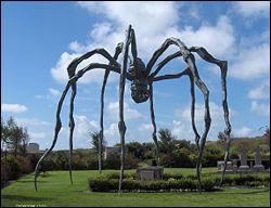 Dans mes oeuvres, l'araignée est la représentation de ma mère, américaine d'origine française, je suis ...