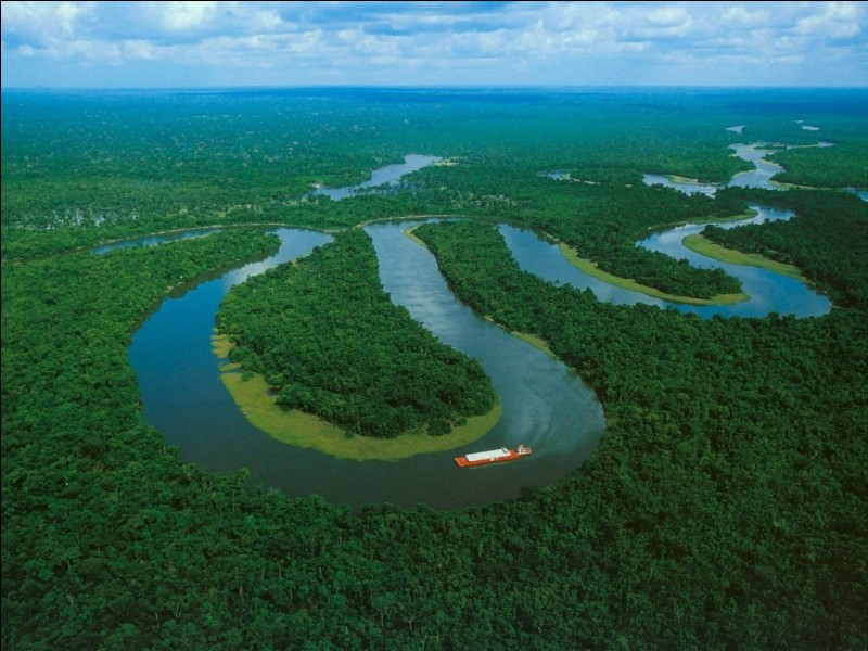 Comment surnomme-t-on la forêt amazonienne ?