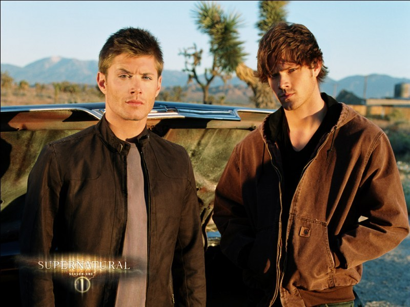 Supernatural (saison 1)