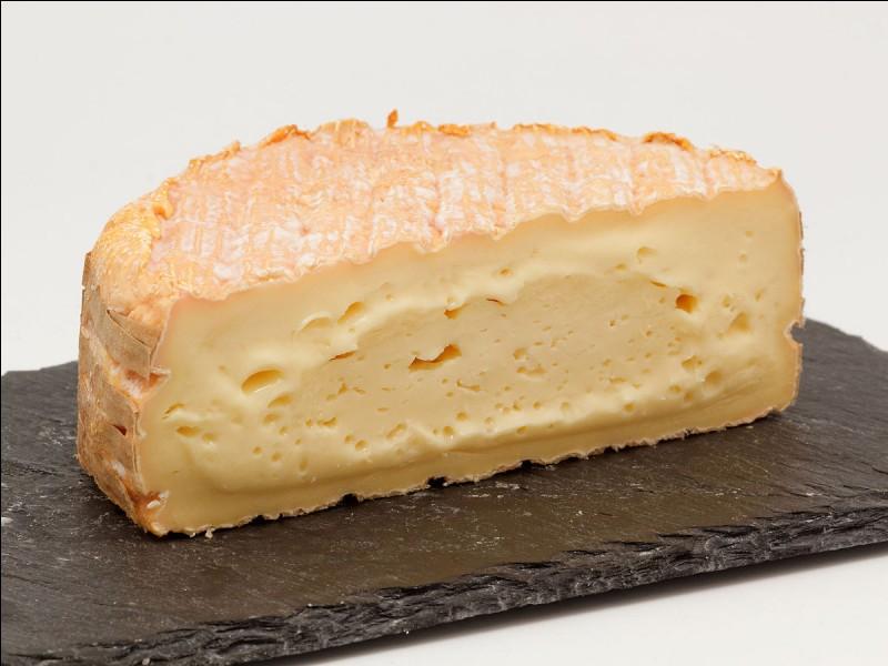Quel fromage aimes-tu le moins ?