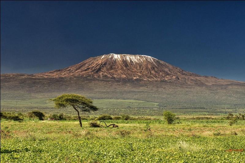 Quelle est l'altitude du Kilimandjaro ?
