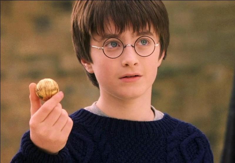 Quel rôle a Harry dans le quidditch ?