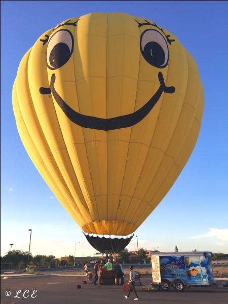 """En 1782, les frères Montgolfier ont inventé un engin appelé montgolfière qu'ils font voler pour la première fois le 19 septembre 1783. Qui étaient les seuls passagers """"VIP"""" si on peut dire ?"""