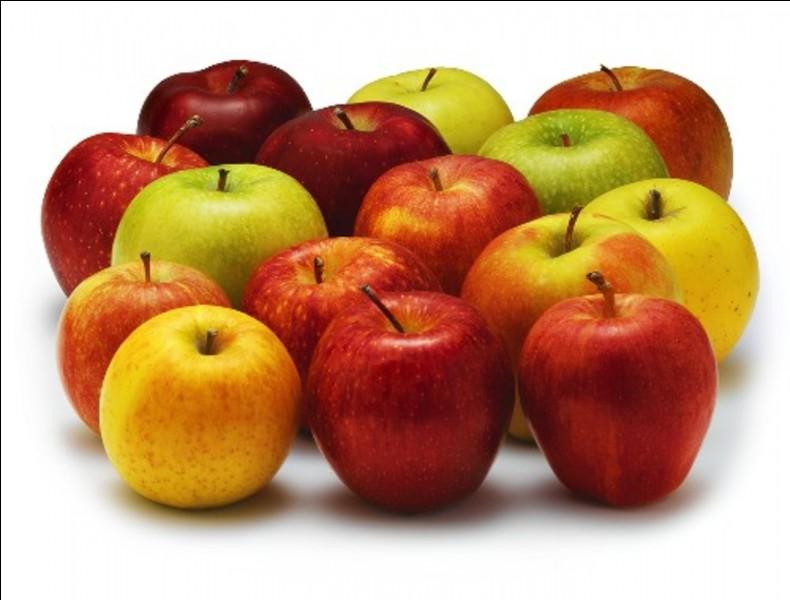Quand peut-on récolter les pommes ?