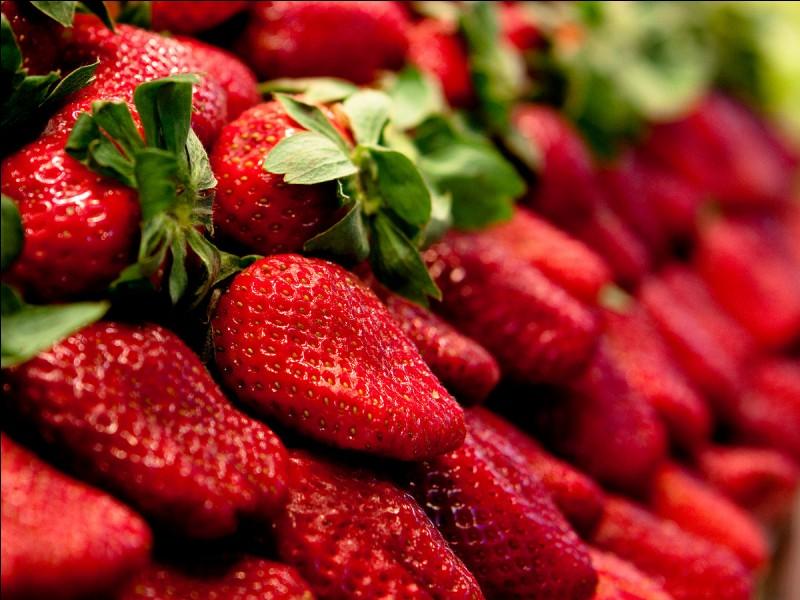 Quelle est la saison des fraises ?