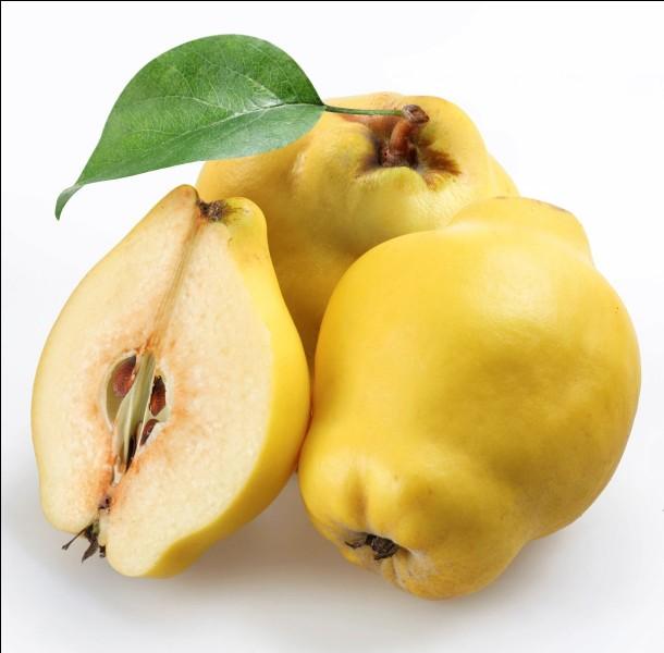 Quels fruits poussent sur le cognassier ?