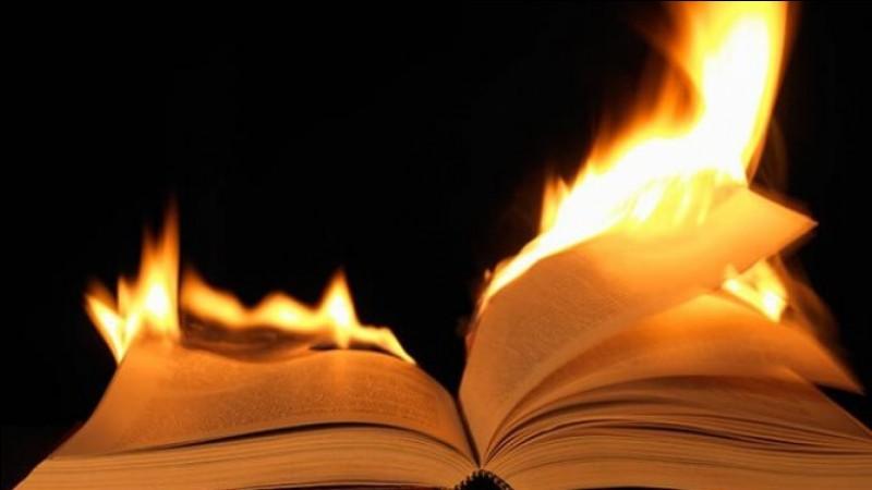 Quel livre préfères-tu ?