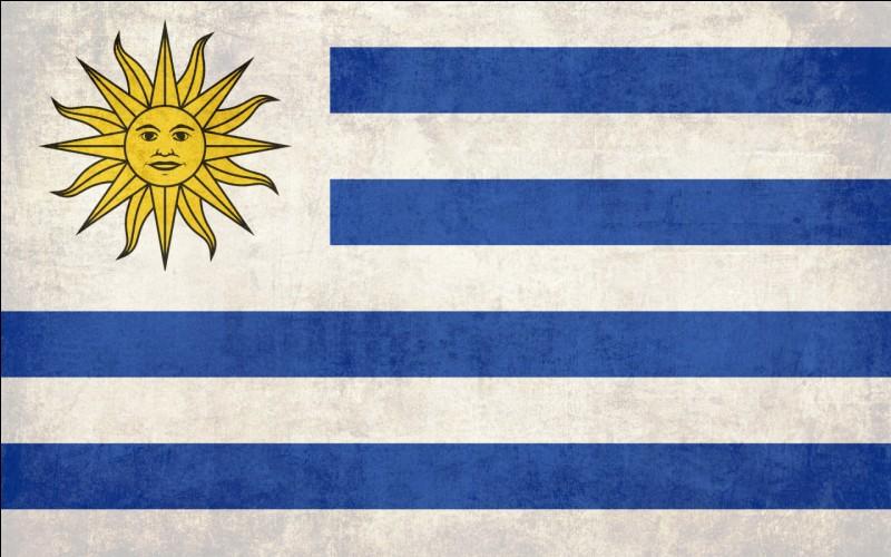 Quel pays ce drapeau représente-t-il ?
