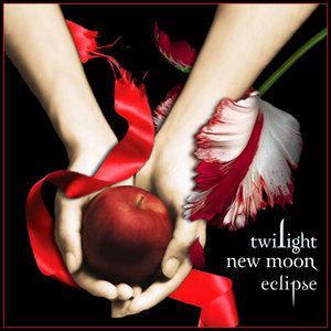 Quel vampire meurt dans New Moon ?