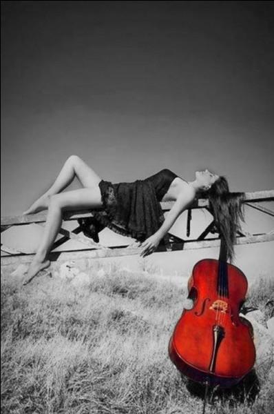 """Qui, dans sa chanson, nous souhaite """"tous les bonheurs du monde"""" ?"""