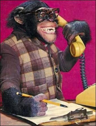 Qui parle au téléphone ?