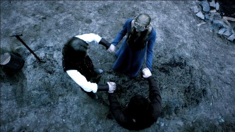 """Je vous dis : vampires originels, 5 frères et 1 sœur, """"Pour toujours et à jamais"""", vous pensez à :"""