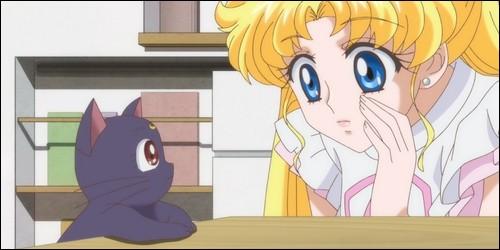 Qui est sa conseillère (celle qui la dirige dans son rôle de Sailor Moon) ?