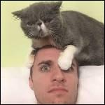 Quel est le nom du chat de Squeezie ?