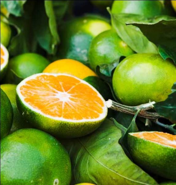 U - Cet agrume originaire de la Jamaïque, hybride du pomelo et de la mandarine, est un ''ugli''.