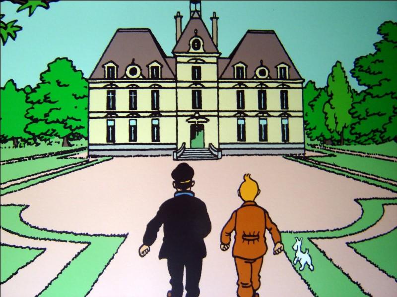 Qui a acheté le château de Moulinsart ?
