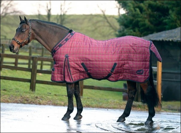 Pourquoi met-on parfois une couverture sur un cheval ?