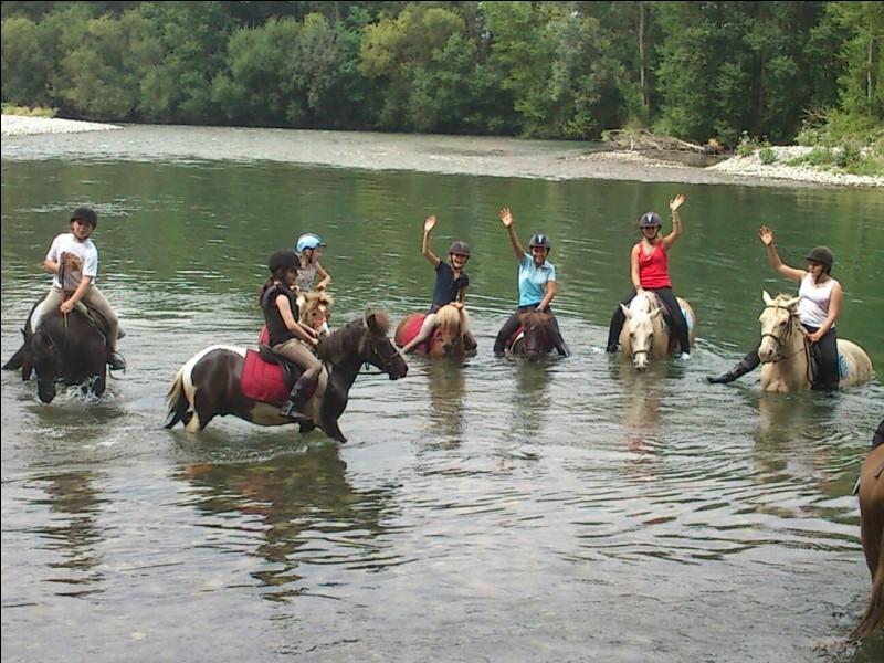 Les activités .Quelles sont les activités que nous pouvons faire avec le cheval ?