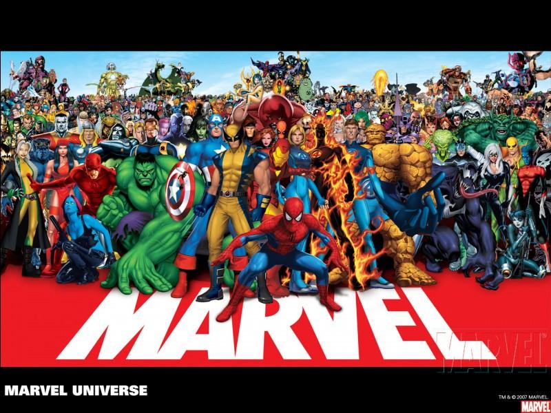 Quel est le personnage que nous voyons dans tous les films Marvel ?