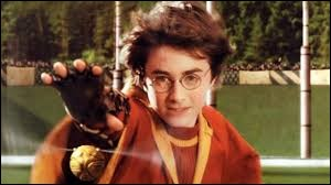 Comment Harry fait-il gagner son équipe au quidditch ?