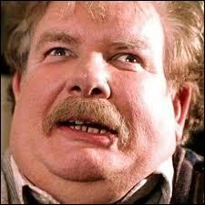 Dans quoi Vernon, l'oncle de Harry, l'enferme-t-il ?