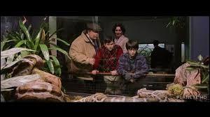 Que fait le père de Dudley en voyant le serpent n'a pas bougé sous les agacements de Dudley ?