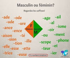 Féminin ou masculin ?